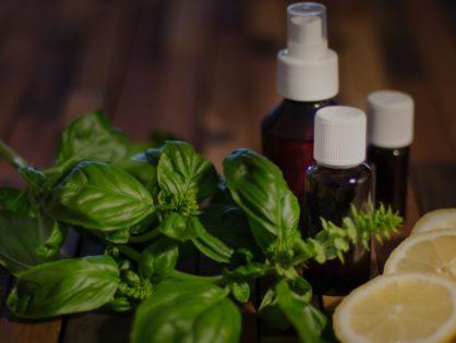 Les vertues du Citron, du basilic et des huiles essentielles