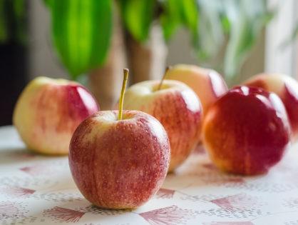 Préparer la conception avec la nutrition - Pour HELLO TRIBU